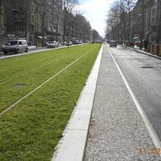 bordure tramway