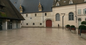 Dallage en Comblanchien devant les Hospices de Beaune (21)