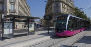 Bordures en Comblanchien du Tramway de Dijon